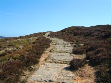 North York Moors footpath